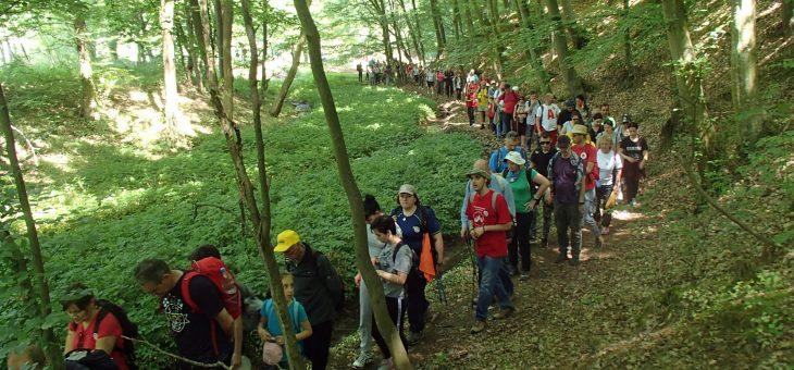 Najava akcije: Rekreativna kružna tura do manastira Pokajnica