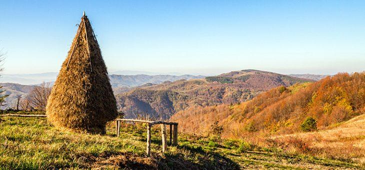 Najava akcije: 25. Prolećni dan planinara – Gledićke planine