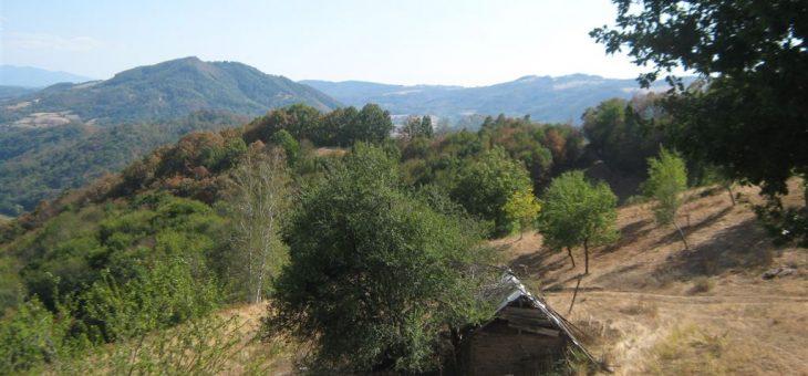 Najava akcije: Dan čistih planina : Banja Vrujci – Rajac
