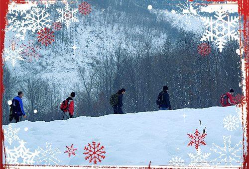 Najava akcije: Tradicionalna novogodišnja šetnja Radovanjskim brdima