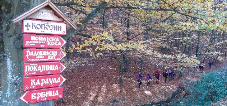 Izveštaj sa akcije: Jesen na Radovanjskim brdima